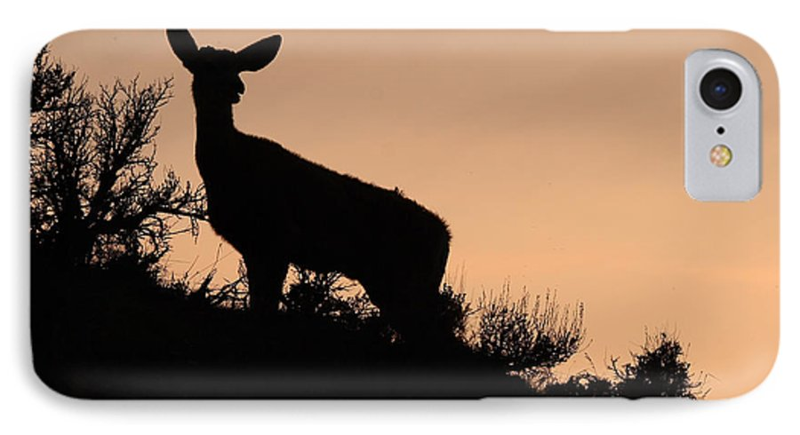 Deer IPhone 7 Case featuring the photograph Mule Deer Silhouetted Against Sunset Ridge by Max Allen