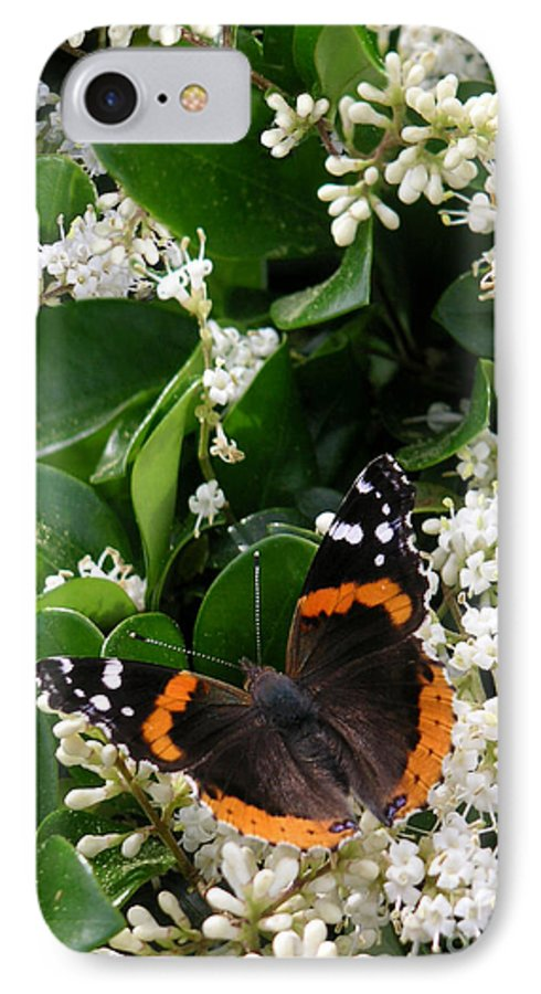 Nature IPhone 7 Case featuring the photograph Nature In The Wild - A Sweet Stop by Lucyna A M Green