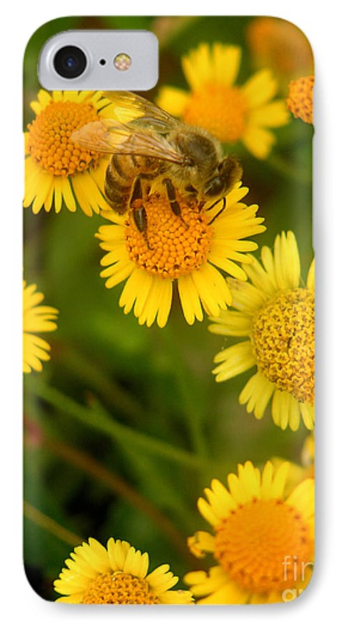 Nature IPhone 7 Case featuring the photograph Nature In The Wild - The Nectar Company by Lucyna A M Green