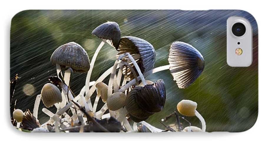 Mushrooms Rain Showers Umbrellas Nature Fungi IPhone 7 Case featuring the photograph Nature by Sheila Smart Fine Art Photography