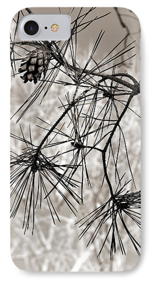 Tree IPhone 7 Case featuring the photograph Needles Everywhere by Marilyn Hunt