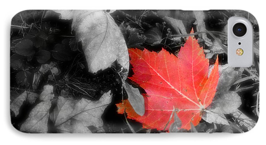 Leaf IPhone 7 Case featuring the photograph One Of A Kind by Kenneth Krolikowski