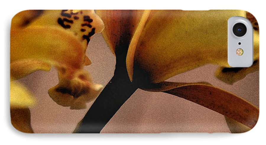 Orchid IPhone 7 Case featuring the photograph Orchid Yellow by Michael Ziegler