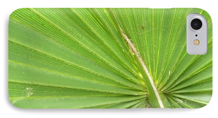 Palmetto IPhone 7 Case featuring the photograph Palmetto II by Kathy Schumann