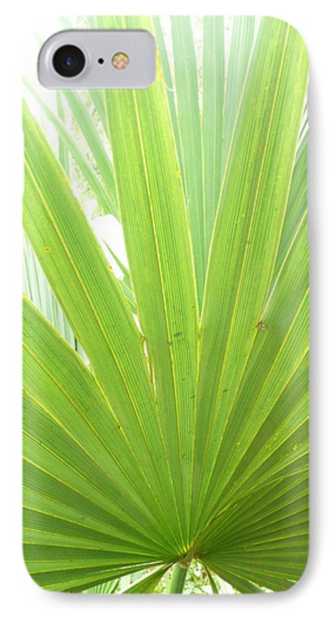 Green IPhone 7 Case featuring the photograph Palmetto by Kathy Schumann