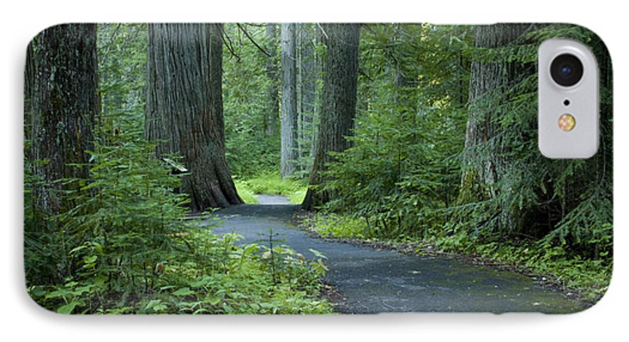 Grove IPhone 7 Case featuring the photograph Path Through The Cedars by Idaho Scenic Images Linda Lantzy