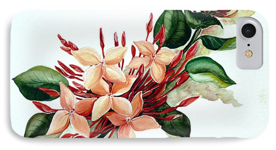 Floral Peach Flower Watercolor Ixora Botanical Bloom IPhone 7 Case featuring the painting Peachy Ixora by Karin Dawn Kelshall- Best