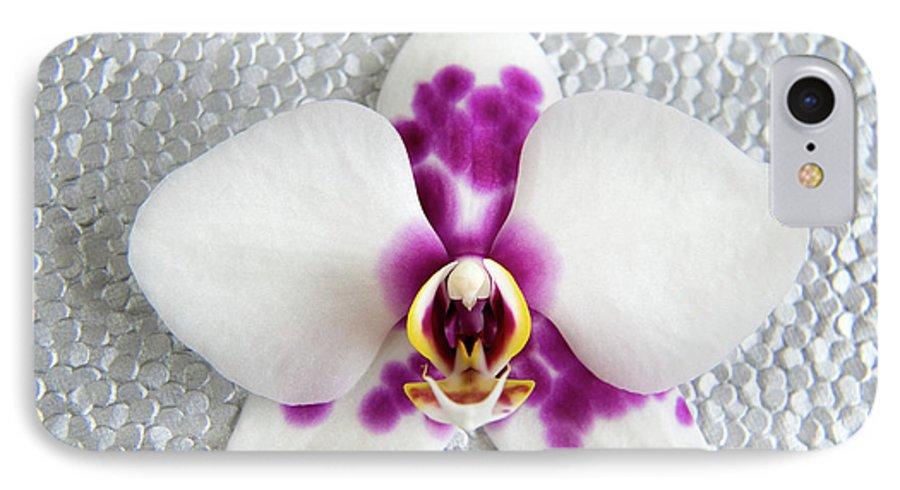 Nature IPhone 7 Case featuring the photograph Phalaenopsis Yu Pin Panda by Julia Hiebaum