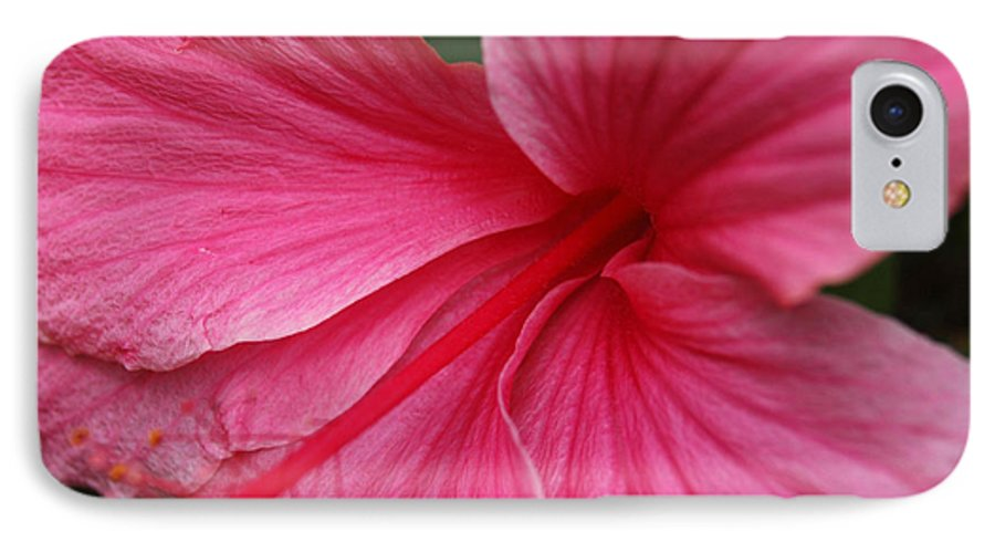 Pink IPhone 7 Case featuring the photograph Pink Hibiscus by Kathy Schumann