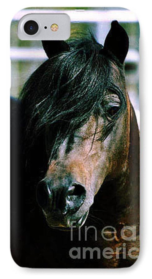 Horse IPhone 7 Case featuring the photograph Portrait Of His Majesty - The King by Kathy McClure