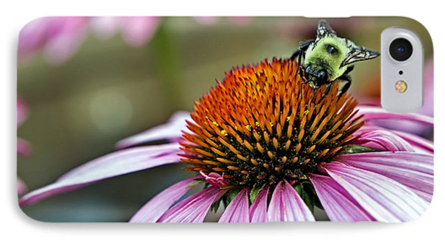 Macro IPhone 7 Case featuring the photograph Purple Cone Flower And Bee by Al Mueller