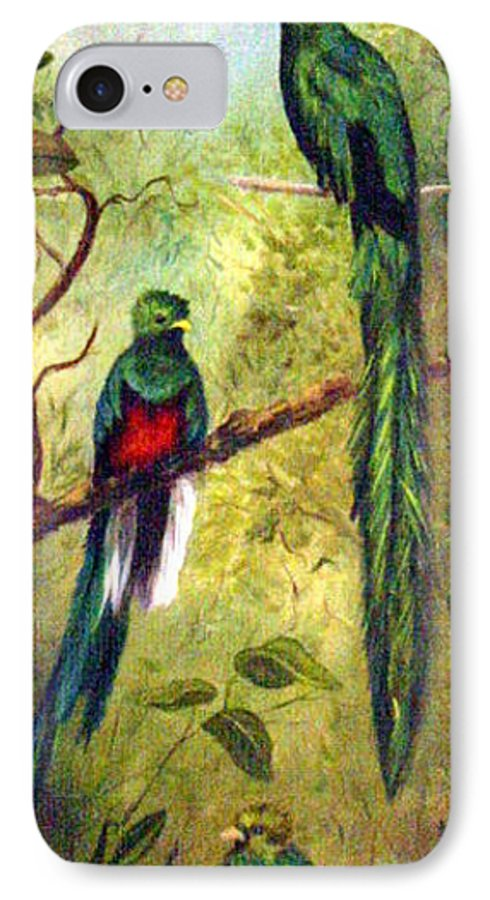 Landscape IPhone 7 Case featuring the painting Quetzels by Anne Kushnick
