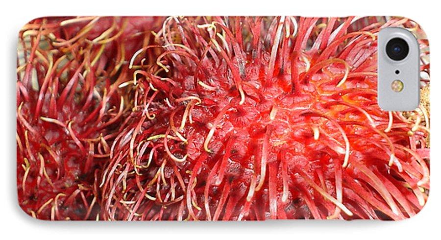 Fruit Close Up IPhone 7 Case featuring the photograph Rambutan by Chandelle Hazen