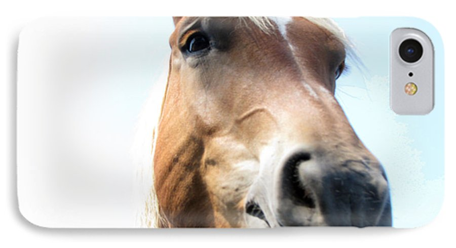 Horse IPhone 7 Case featuring the photograph Really by Amanda Barcon