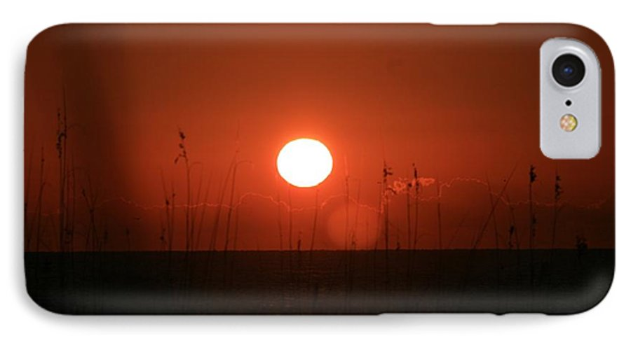 Sunset IPhone 7 Case featuring the photograph Red Sunset And Grasses by Nadine Rippelmeyer