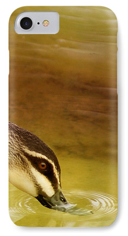 Animals IPhone 7 Case featuring the photograph Ripples by Holly Kempe