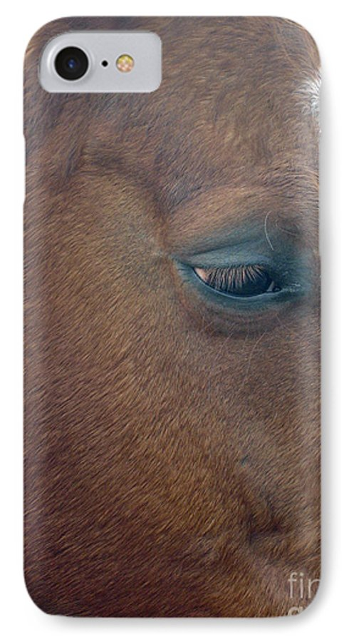 Horse IPhone 7 Case featuring the photograph Sad Eyed by Shelley Jones
