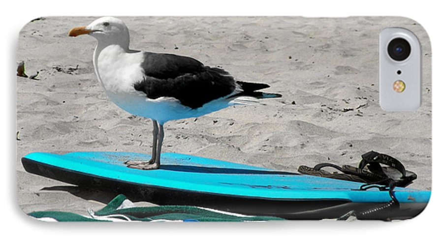 Bird IPhone 7 Case featuring the photograph Seagull On A Surfboard by Christine Till