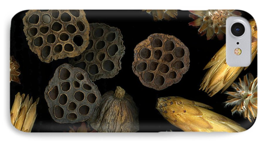 Pods IPhone 7 Case featuring the photograph Seeds And Pods by Christian Slanec