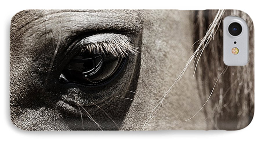 Americana IPhone 7 Case featuring the photograph Stillness In The Eye Of A Horse by Marilyn Hunt