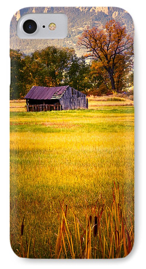 Shed IPhone 7 Case featuring the photograph Shed In Sunlight by Marilyn Hunt