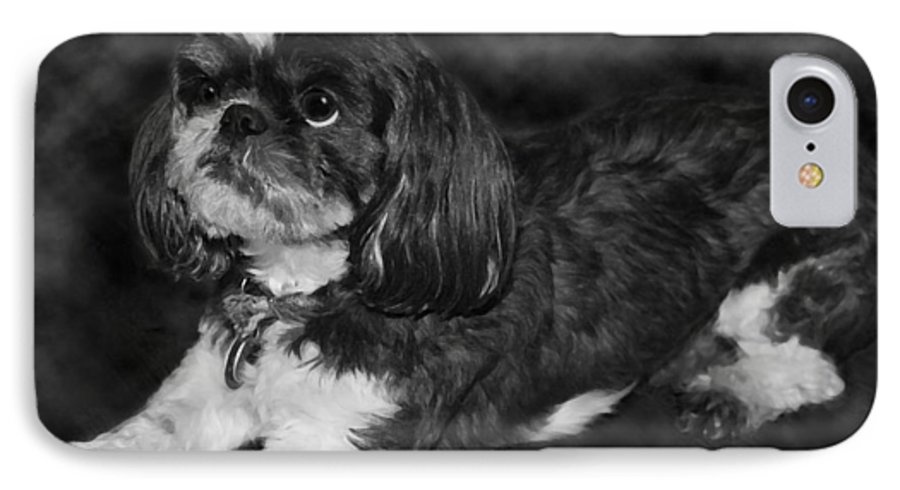 3scape IPhone 7 Case featuring the painting Shih Tzu by Adam Romanowicz