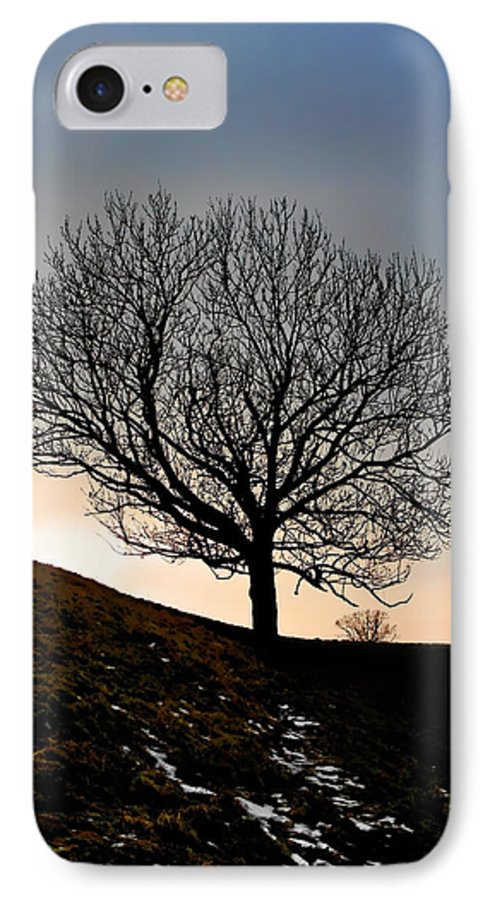 Tree IPhone 7 Case featuring the photograph Silhouette Of A Tree On A Winter Day by Christine Till