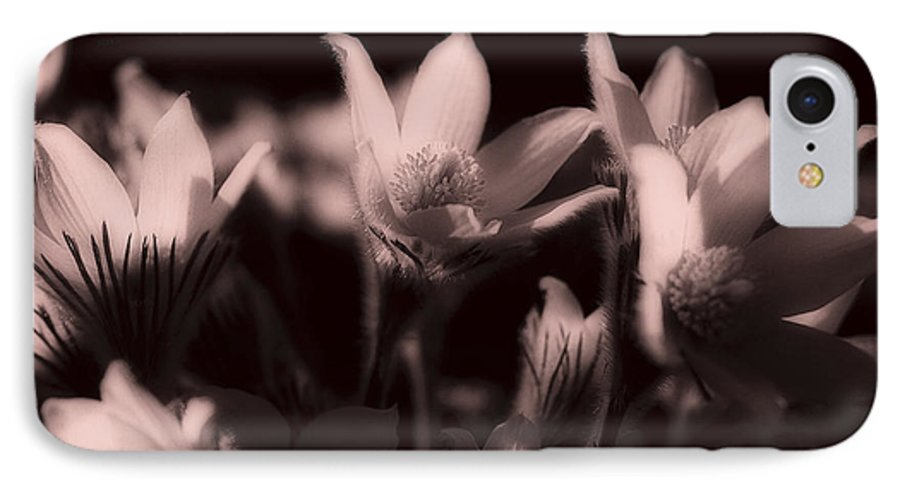 Flowers IPhone 7 Case featuring the photograph Sleepy Flowers 2 by Marilyn Hunt