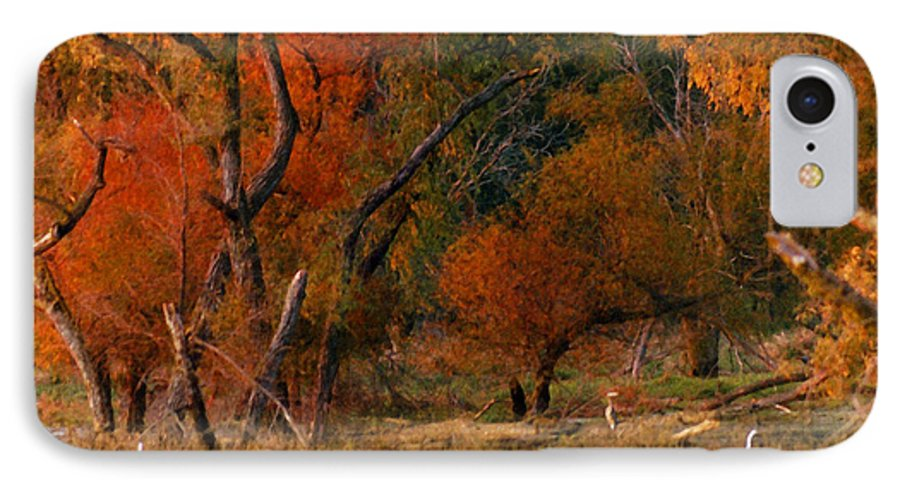 Landscape IPhone 7 Case featuring the photograph Squaw Creek Egrets by Steve Karol