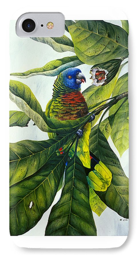 Chris Cox IPhone 7 Case featuring the painting St. Lucia Parrot And Fruit by Christopher Cox