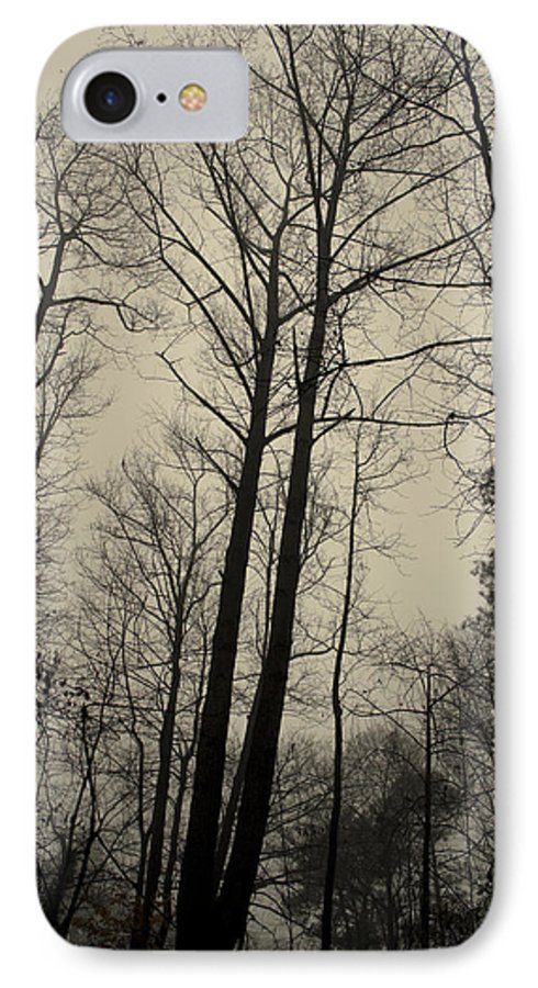 Trees IPhone 7 Case featuring the photograph Standing Tall by Ayesha Lakes