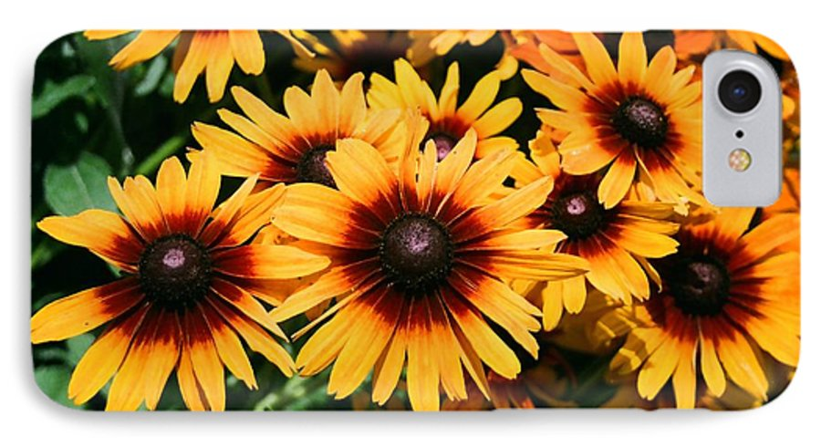 Sunflowers IPhone 7 Case featuring the photograph Sunflowers by Dean Triolo