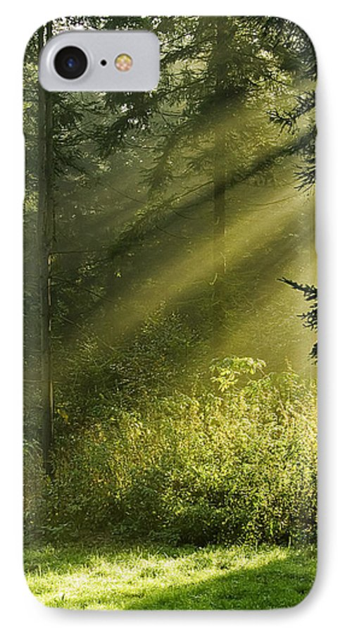 Nature IPhone 7 Case featuring the photograph Sunlight by Daniel Csoka