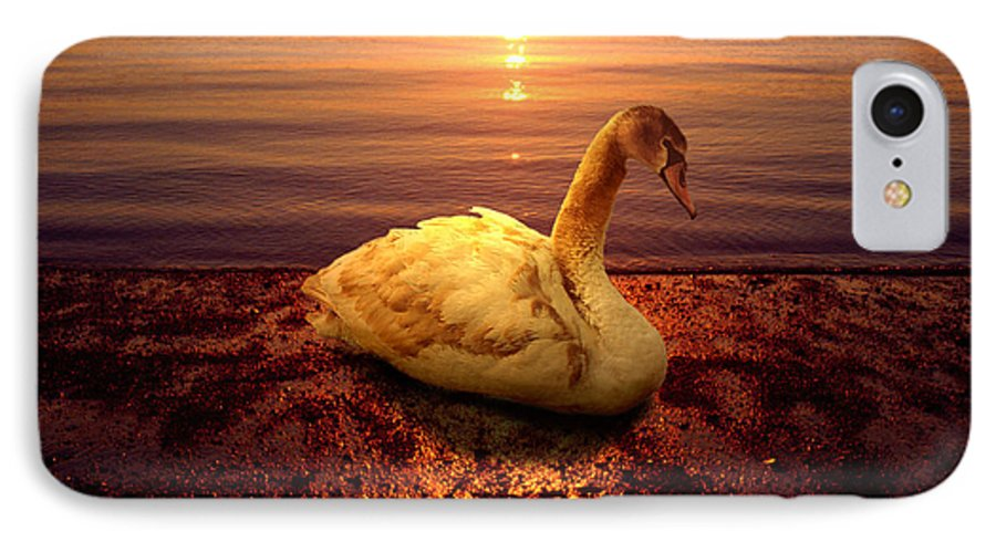 Animal IPhone 7 Case featuring the photograph Swan Lake by Yuri Lev