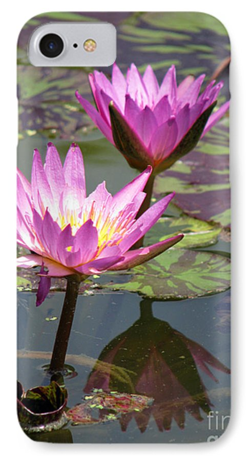 Lillypad IPhone 7 Case featuring the photograph The Pond by Amanda Barcon