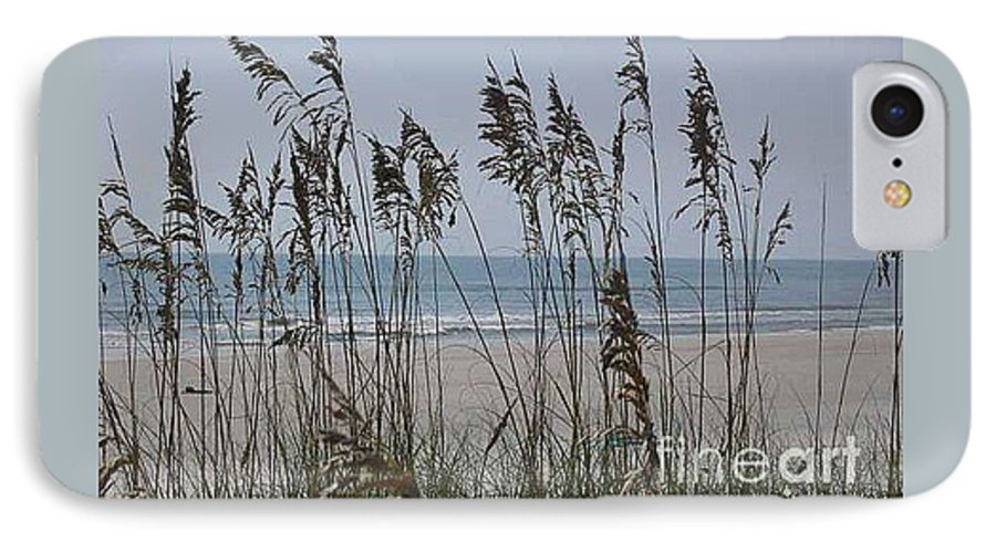 Florida Beach Near St. Augustine IPhone 7 Case featuring the photograph Thru The Sea Oats by Barb Montanye Meseroll