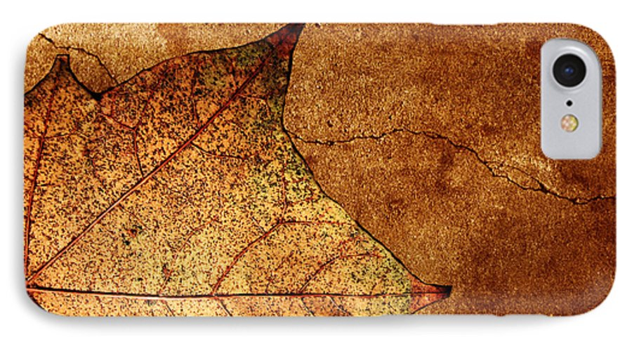 Autumn IPhone 7 Case featuring the photograph Today Everything Changes by Dana DiPasquale
