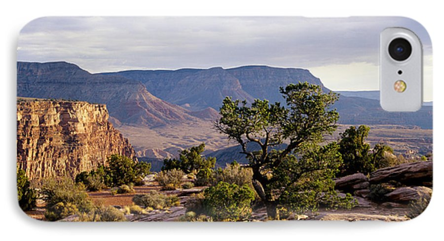 Arizona IPhone 7 Case featuring the photograph Toroweap by Kathy McClure