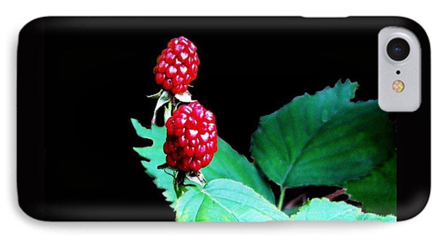 Black Berries IPhone 7 Case featuring the digital art Unripe Blackberries by Kenna Westerman
