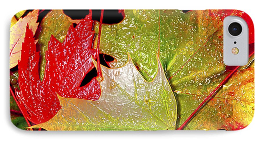 Leaves IPhone 7 Case featuring the photograph Wet Leaves Of Fall by Larry Keahey