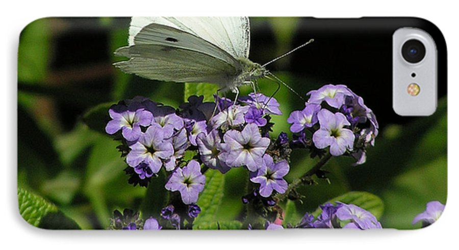 White IPhone 7 Case featuring the photograph White Butterfly by Louise Magno