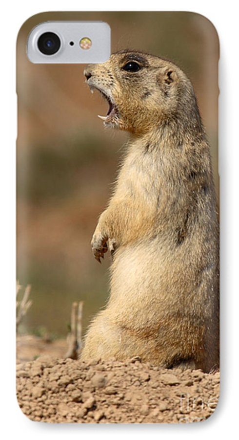 Prairie Dog IPhone 7 Case featuring the photograph White-tailed Prairie Dog Giving A Fierce Bark by Max Allen