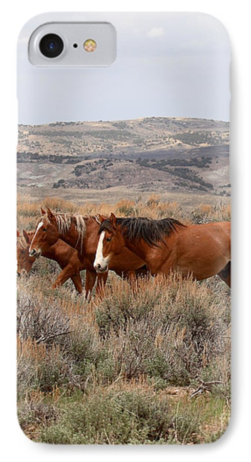 Horse IPhone 7 Case featuring the photograph Wild Horse Trio by Max Allen