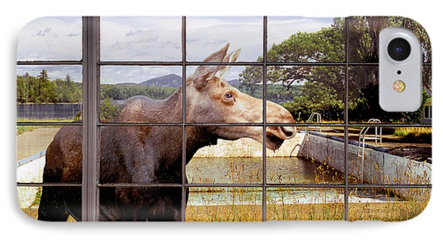 Moose IPhone 7 Case featuring the photograph Window - Moosehead Lake by Peter J Sucy