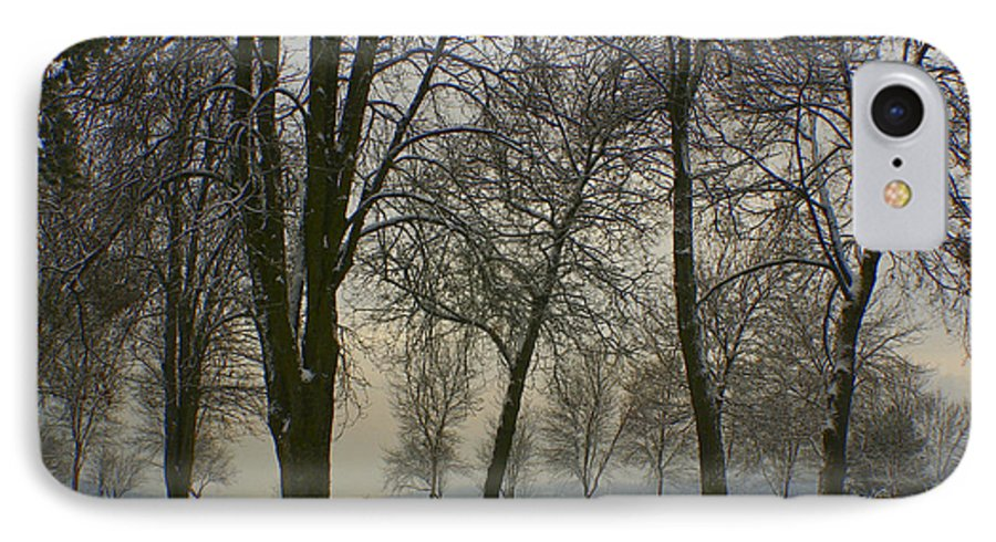 Park IPhone 7 Case featuring the photograph Winter Wonderland by Idaho Scenic Images Linda Lantzy