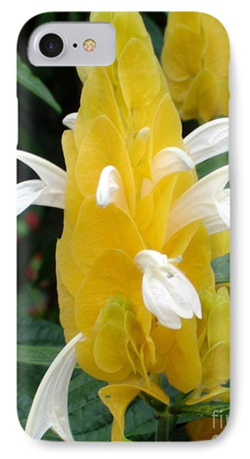 Flower IPhone 7 Case featuring the photograph Yellow Eruption by Shelley Jones