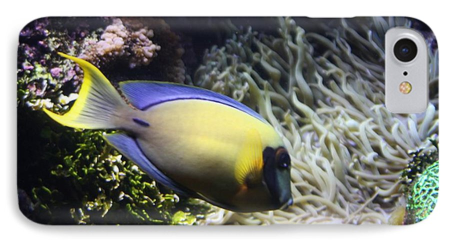 Fish IPhone 7 Case featuring the photograph Yellow Fish by Kenna Westerman