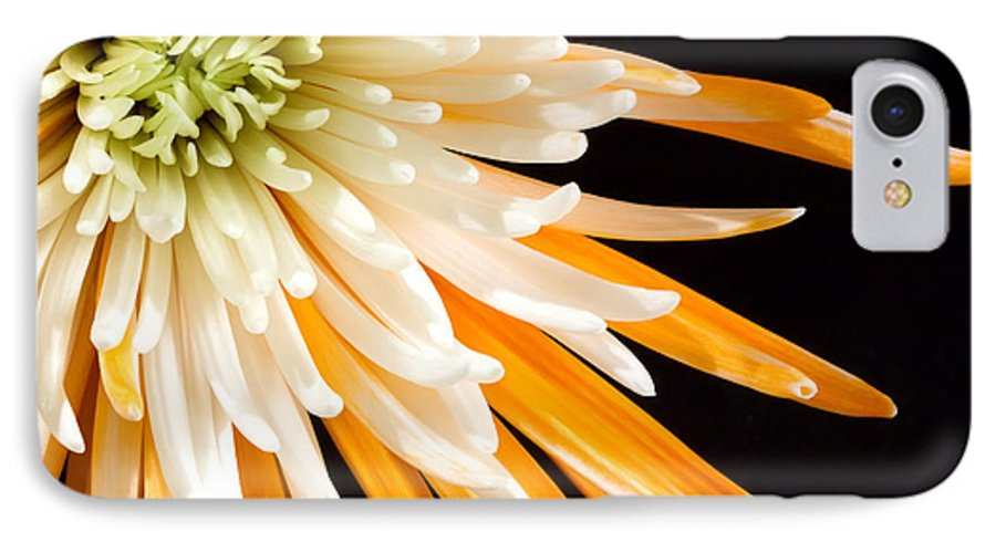 Flower IPhone 7 Case featuring the photograph Yellow Flower On Black by Al Mueller