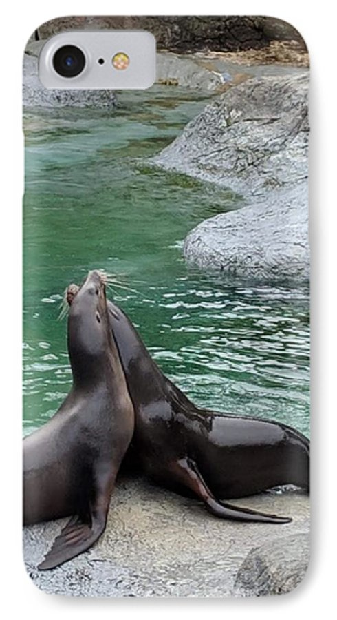 Blue IPhone 7 Case featuring the photograph Seal by Aswini Moraikat Surendran