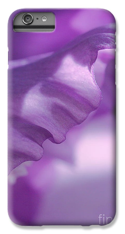 Flower IPhone 7 Plus Case featuring the photograph Face In A Glad by Steve Augustin